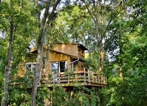 Cabane dans les arbres proche paris disney provins for Acheter cabane dans les arbres